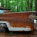 Rusty Old Cars in Georgia