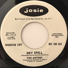 THE METERS:DRY SPELL(LABEL SIDE-A)