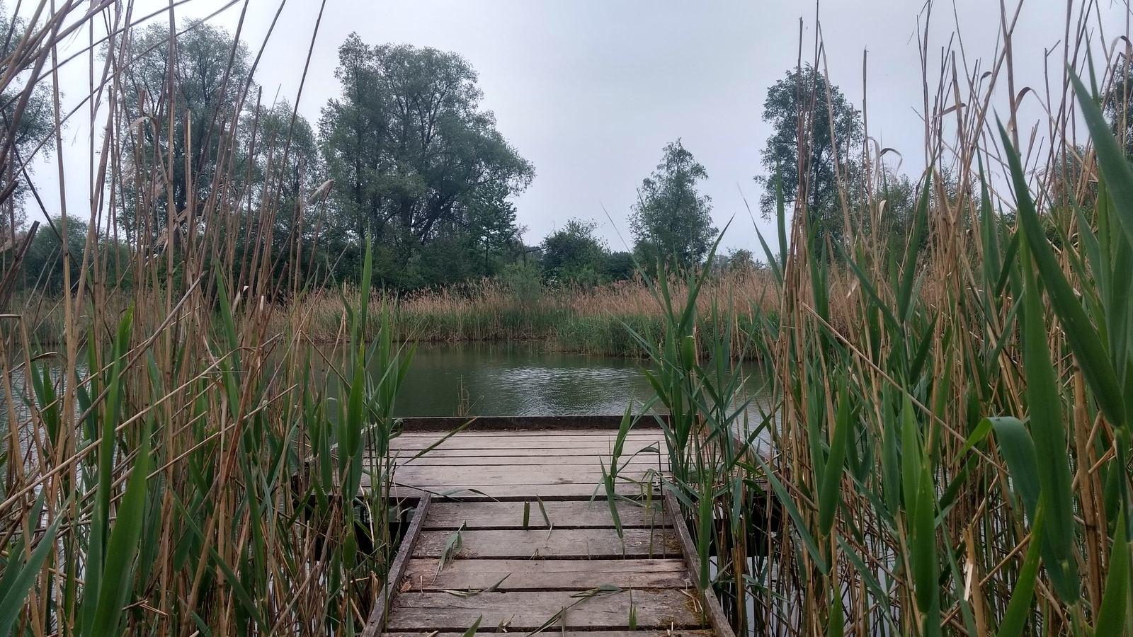 Joggen und Wandern in den Innauen von Bad Füssing