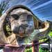Hotter Otter    M5203344_5_6Pa4Sm