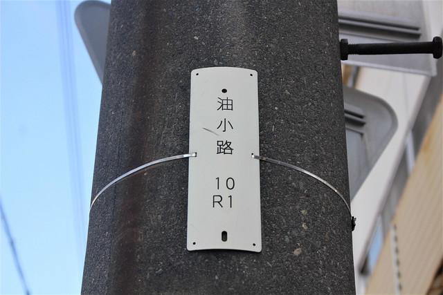 honkoji-gosyuin04028