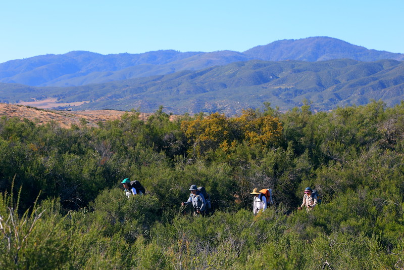 IMG_2452 Through Hikers on PCT