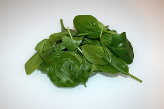 03 - Zutat Blattspinat / Ingredient leaf spinach