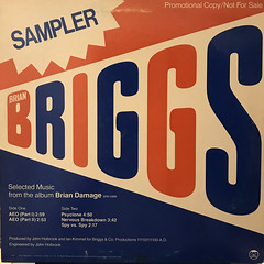 BRIAN BRIGGS:SPECIAL SAMPLER(SELECTED MUSIC FROM THE ALBUM BRIAN DAMAGE)(JACKET B)