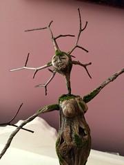Tree Dancer, November 2014