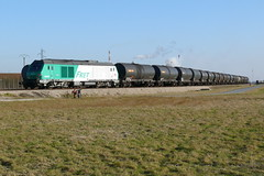 BB 75019 et rame de fuel lourd - Photo of Gastins