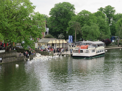 Thames Path - Windsor to Maidenhead