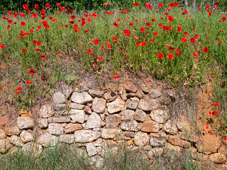 Motiv bei Roussillon