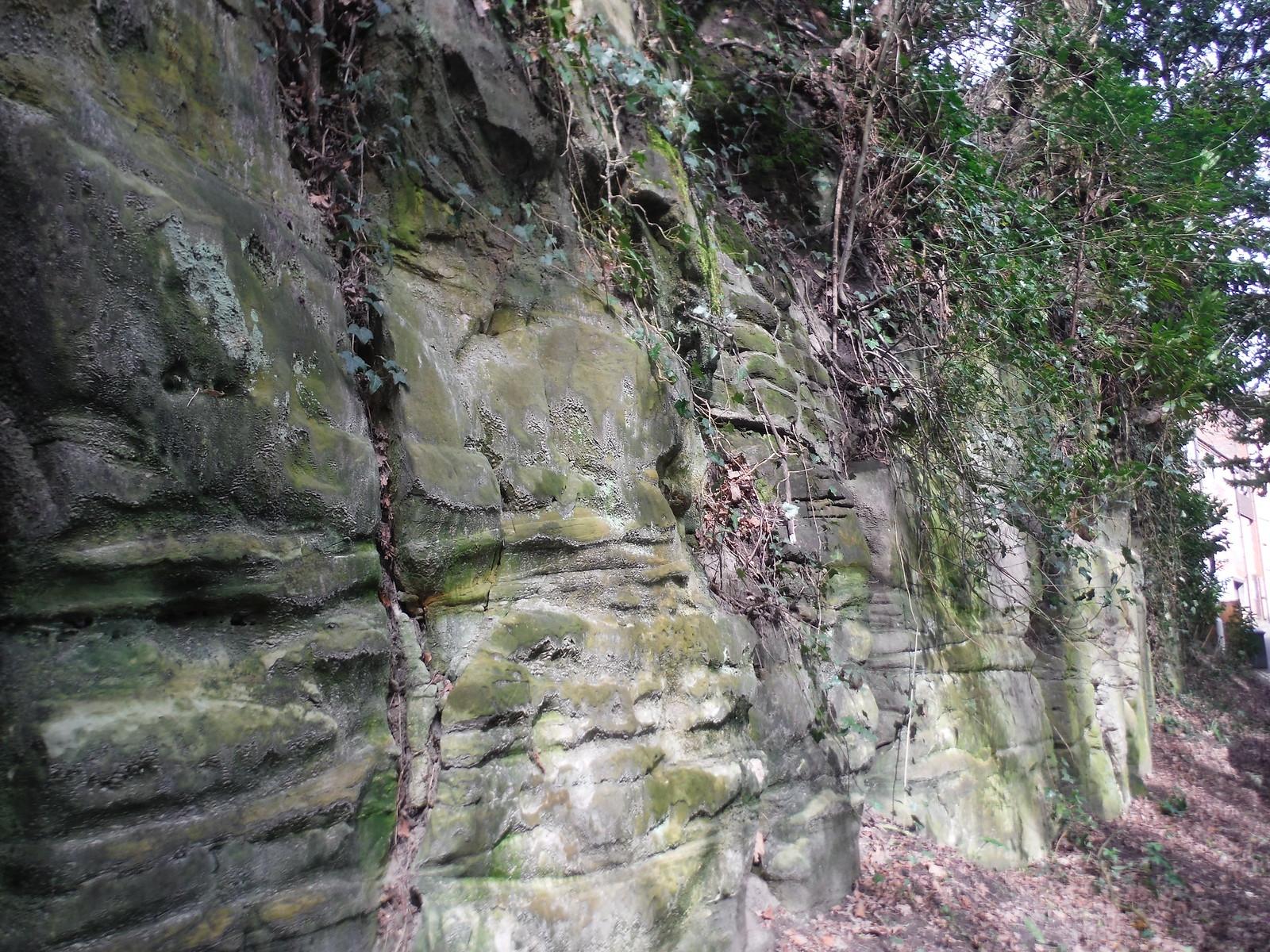 Sandstone bluff, Hermitage Lane - East Grinstead SWC Walk 27 - East Grinstead to Wivelsfield or Sheffield Park