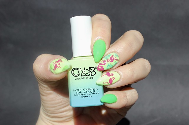 color club mood pastels shine theory flamingos