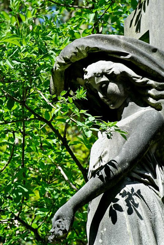 Abney Park Cemetery_2018-2