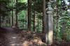 Photo:Choishi Michi trail, Koyasan By DavideGorla
