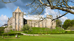Ruines du Chateau du Xè siècle - Photo of La Haye-du-Puits