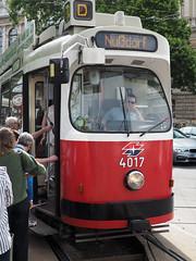 Vienna tram D