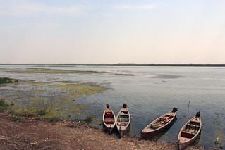 Canoe in Marshes.