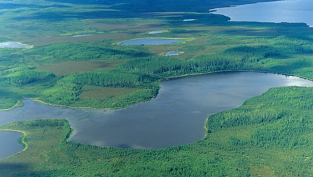 World's larWorld's Largest Protected Boreal Forest