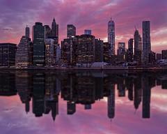 Lower Manhattan Reflections