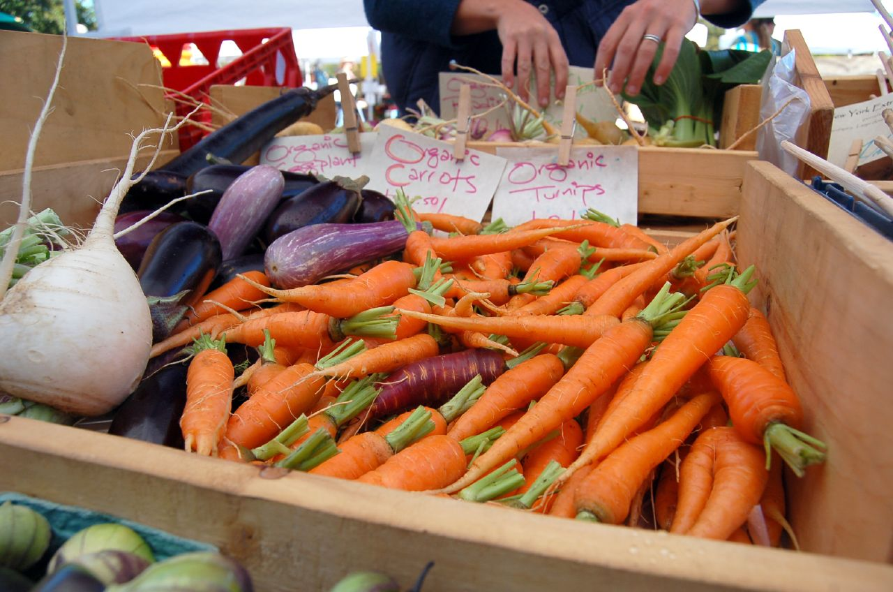 Carrots and Eggplant and Turnips, Oh My!