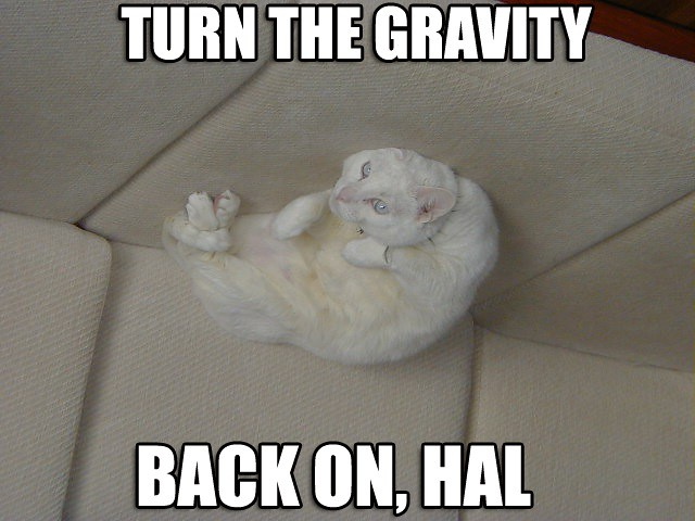 TURN THE GRAVITY BACK ON, HAL