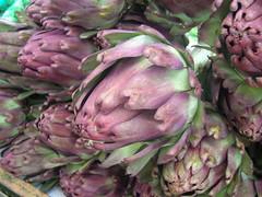asterales(0.0), flower(0.0), thistle(0.0), food(0.0), artichoke thistle(0.0), floristry(0.0), vegetable(1.0), plant(1.0), artichoke(1.0), produce(1.0),