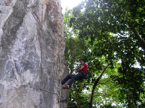 Abseiling for home