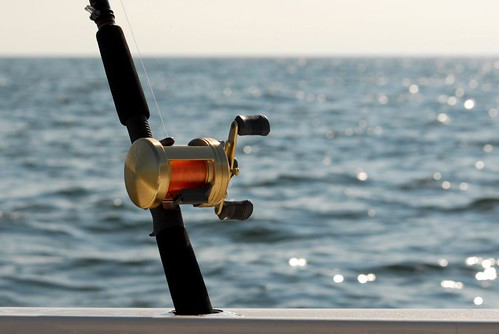 fishing rod and casting reel by Alida's Photos
