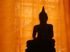 Asiatisch Einrichten mit Buddha Statue