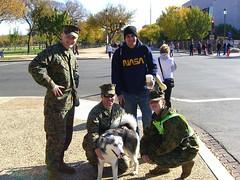 animal sports(0.0), dog(1.0), pet(1.0), police dog(1.0), troop(1.0),