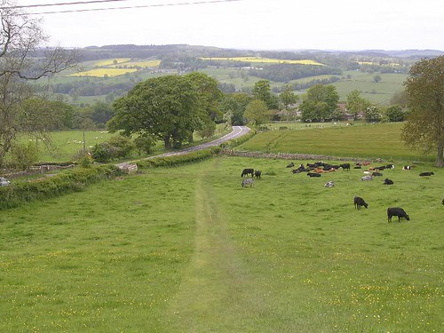 Looking towards the site of Milecastle 26